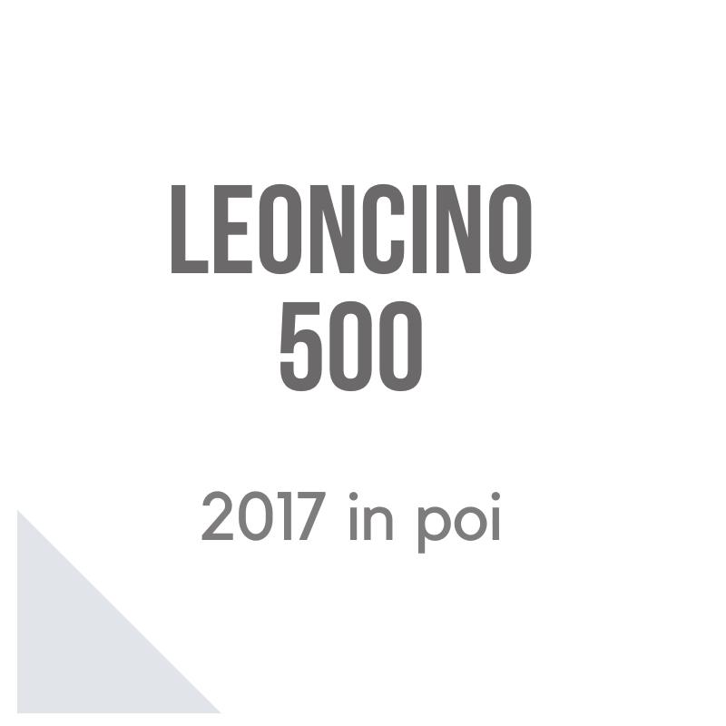 Benelli Leoncino 500 2017 accessori