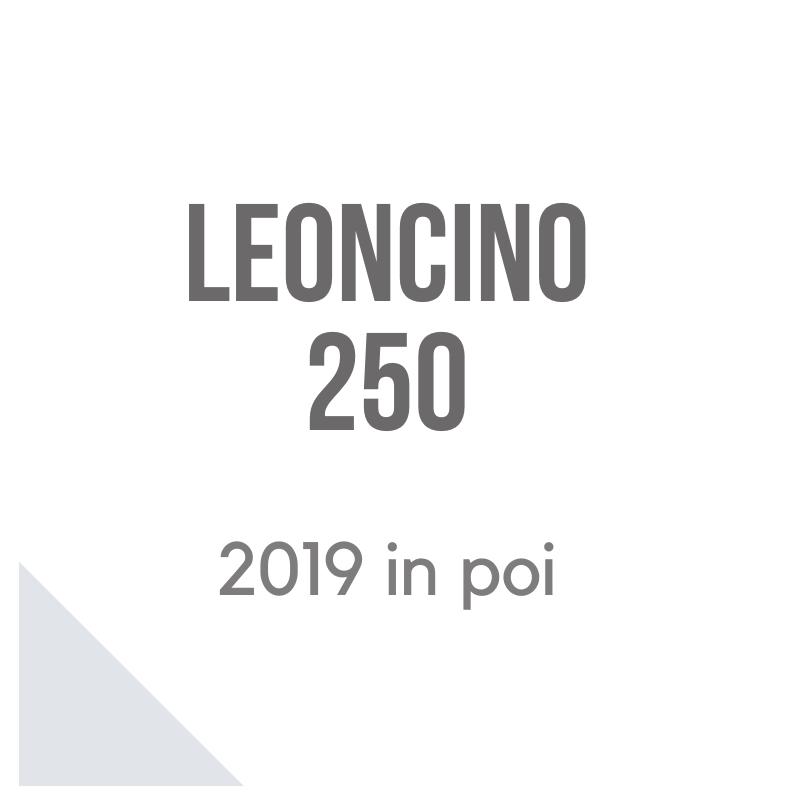 Leoncino 250 accessori