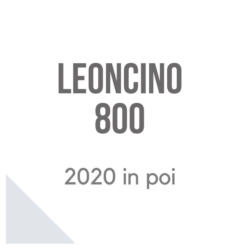 Benelli Leoncino 800 accessori